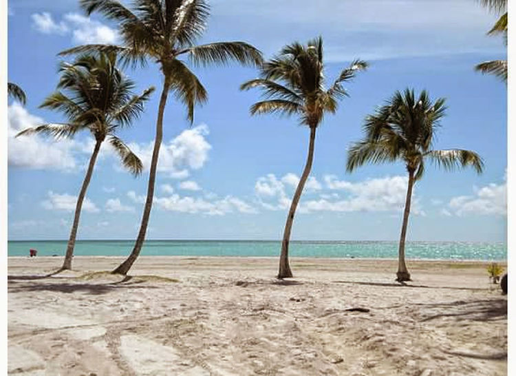 Landscapes With WhiteWall Beach Beach Photography Solitude Nature_perfection Nature Paradise Paradise Beach Punta Cana Beauty