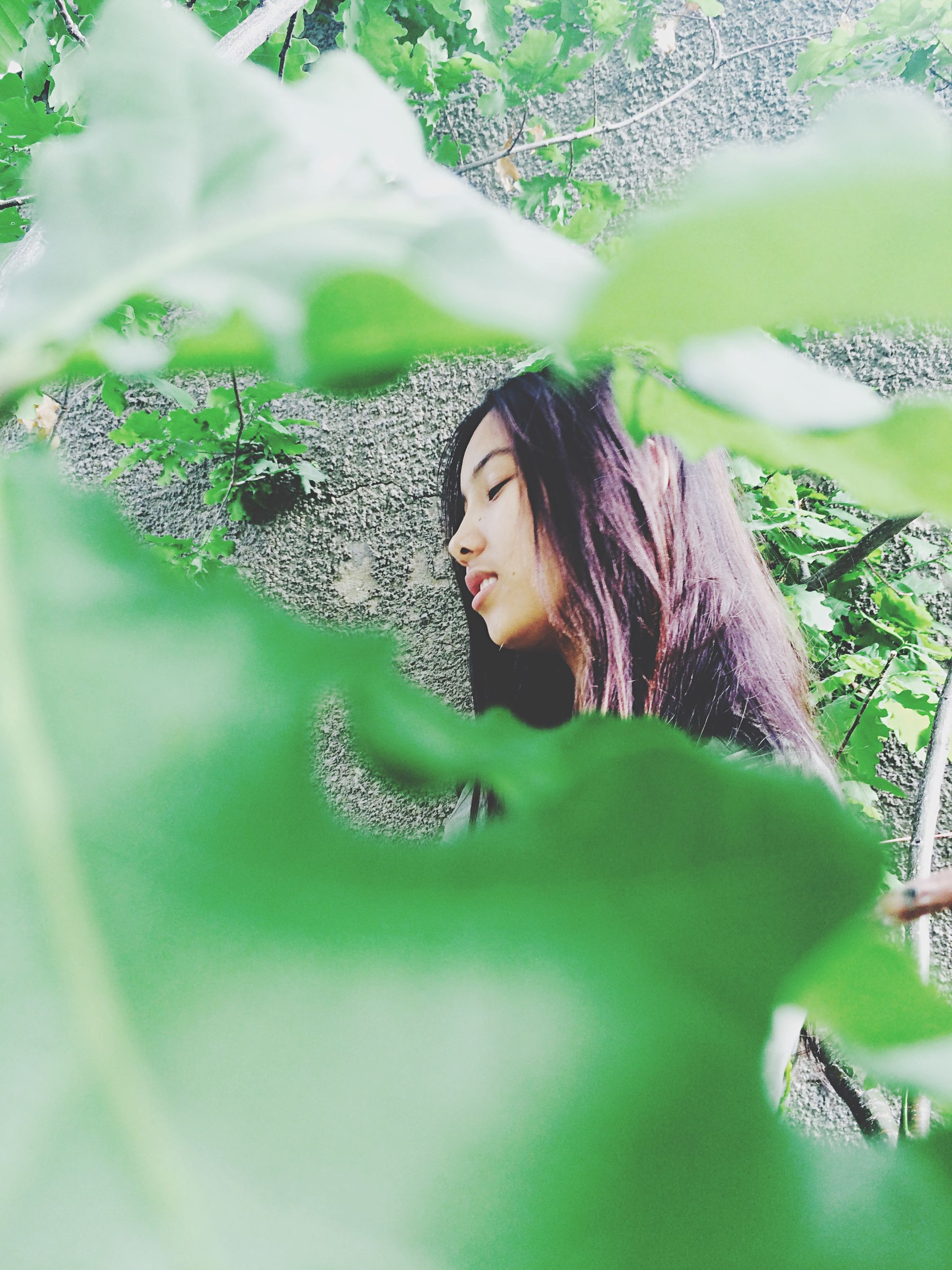 young adult, portrait, young women, looking at camera, person, lifestyles, leisure activity, tree, front view, smiling, plant, long hair, growth, casual clothing, leaf, waist up, green color