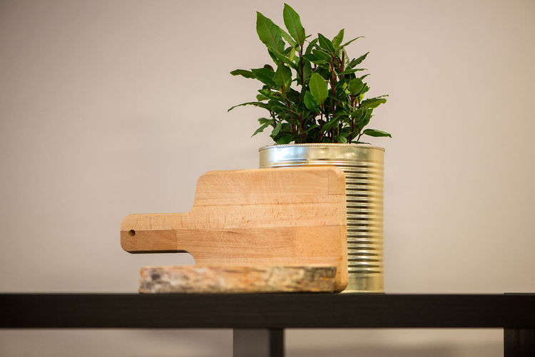 Serving board by plant in metallic can on shelf against wall