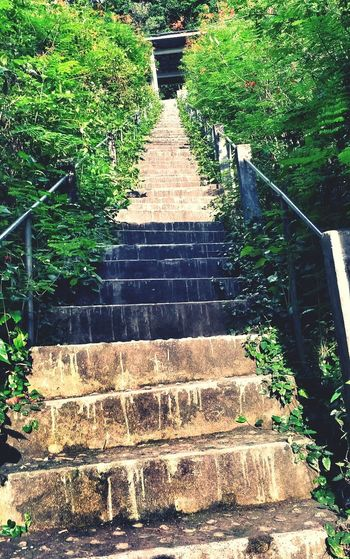 Ladder Monumen Eyem Best Shots EyeEm Indonesia