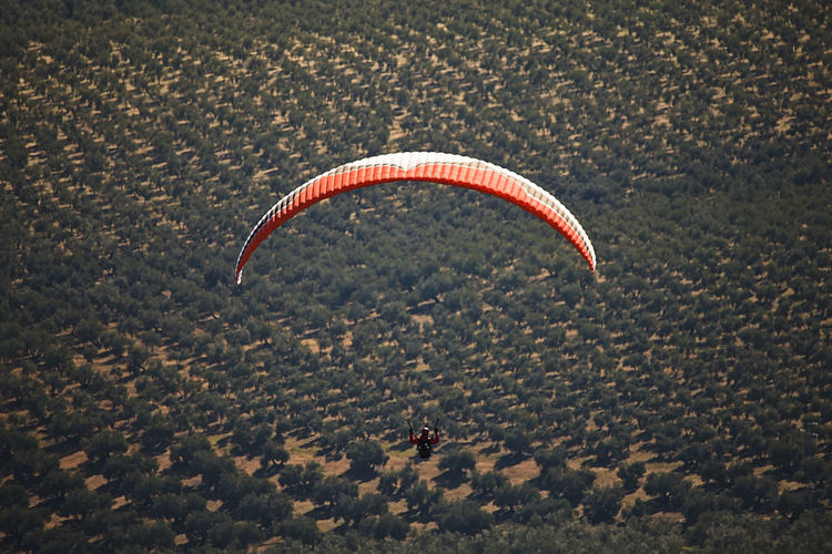 Person paragliding over field