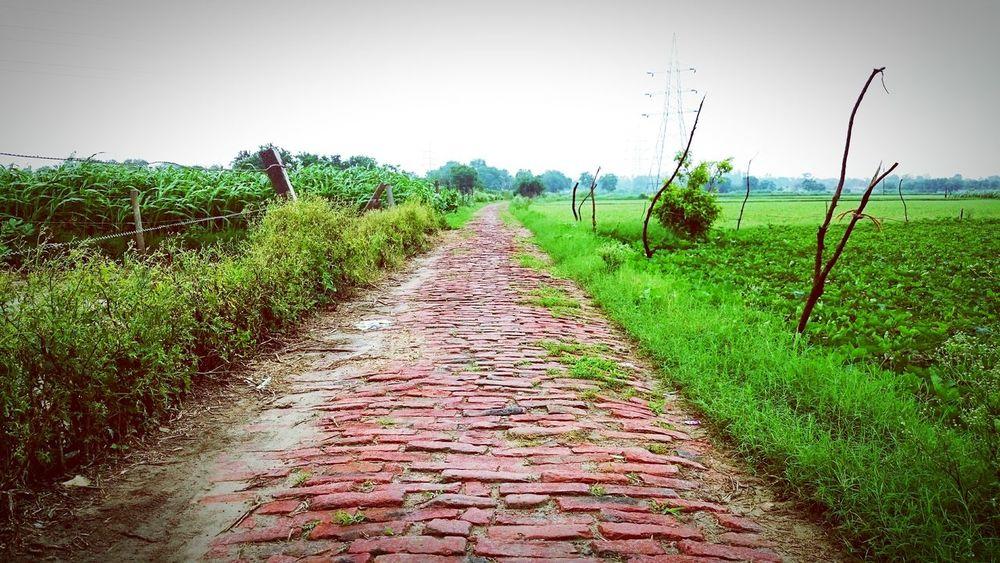 SMELLS_LIKE_INDIA