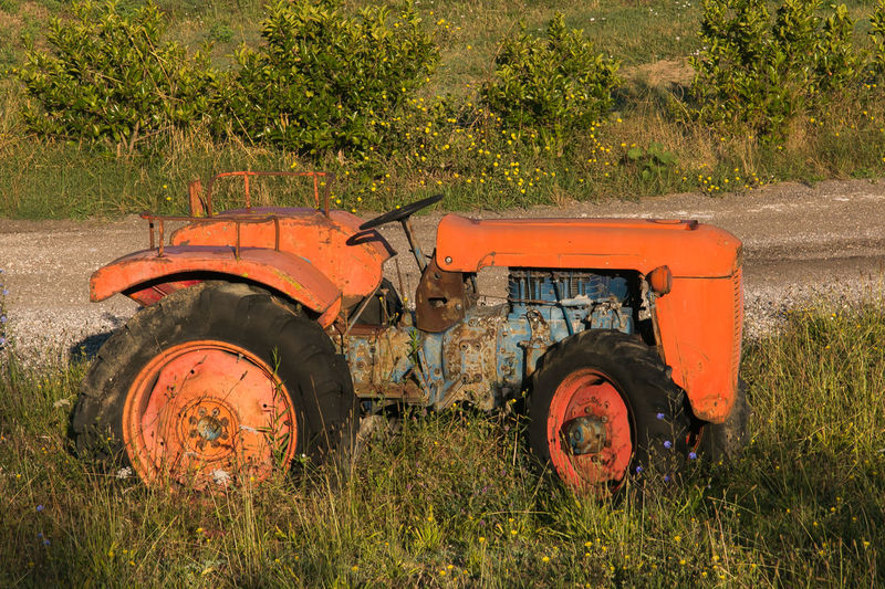 Old red rusty tractor in a field Ancient Country Field Rural Tractor Transport Abandoned Agricultural Equipment Agricultural Machinery Agriculture Field Italy Land Vehicle Landscape Machinery Meadow Mode Of Transportation Obsolete Old Tractor Orange Color Rural Scene Tractor Transportation Umbria Wheel