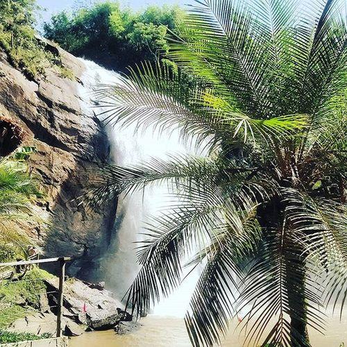 Dia de lavar a alma... Cachoeira Quente Carnival Carnaval BoraLá Slp Cachoeiragrande Paradise