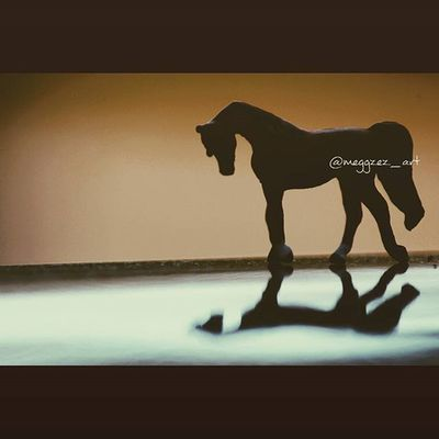 """""""I don't think that anyone, until their soul leaves their body, is past the point of return."""" -Tom Hiddleston ❤ . . Breyer Breyers Breyerhorses Breyerhorse Breyerhorsephotography Breyerphotography Modelhorse Modelhorses Modelhorsephotography"""