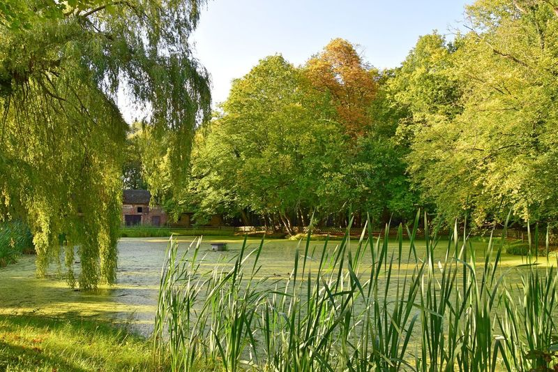 Manor House Gardens Pond Radensleben Architecture Beauty In Nature Building Exterior Built Structure Day Grass Green Color Growth Lake Nature No People Outdoors Park Plant Scenics Sky Tranquil Scene Tranquility Tree Water