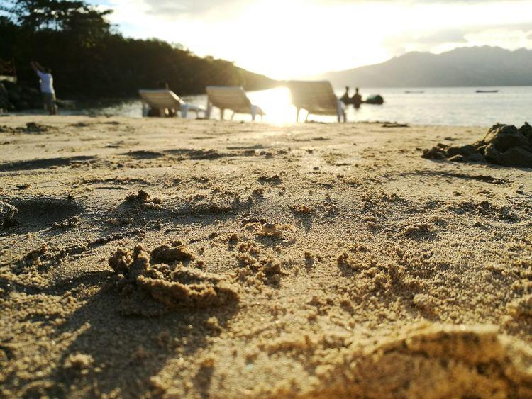 Little steps Crab Beach Sunset Crab On The Beach Beach Time Beach Sunset Sand & Sea