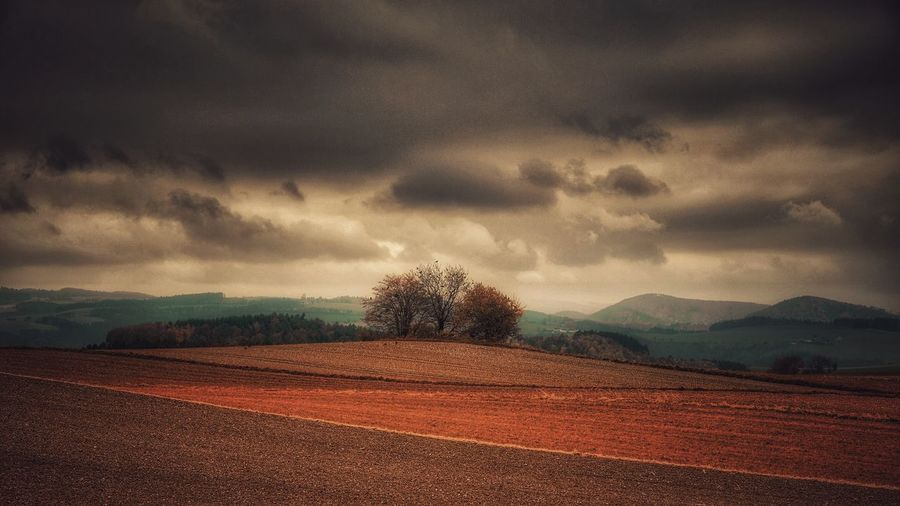 Landscape Cloud - Sky Scenics No People Field Beauty In Nature Tranquil Scene Tranquility Rural Scene Tree Mystical Atmosphere Autumn A Photo Like A Painting Landscape_photography Austria Melancholic Landscapes Mountain Storm Cloud Field Capture The Moment Fuji Xpro2 Vienna Alps