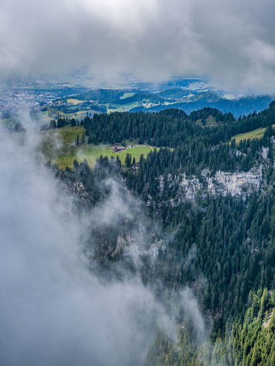 Between the clouds Mountain View Beauty In Nature Cloud - Sky Environment Fog Forest High Angle View Land Landscape Mountain Nature Niederhorn No People Non-urban Scene Outdoors Pine Tree Pine Woodland Plant Scenics - Nature Sky Switzerland Tranquil Scene Tranquility Tree WoodLand #urbanana: The Urban Playground