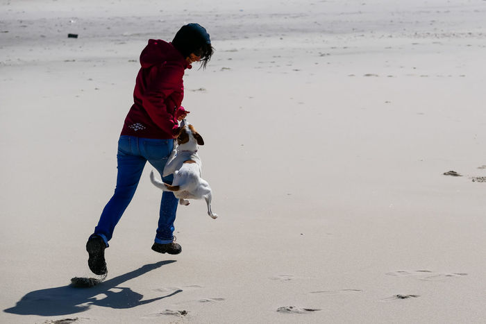 Young woman playing with a dog at a beach Beach Beach Life Bite Biting Dog Lifestyles Motion One Person Outdoors Ovar People Playing Playing With The Animals Portugal Sand Sport Sun