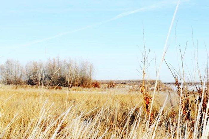 Northzoom Canon1100d Yakutsk фото Ykt14 Якутия зима Vscocam республика саха фотограф Россия Instagood Instaykt Vscogood сахасирэ Fotografii_yakutska @fotografii_yakutska Ykt_sakha @ykt_sakha Selfie_ykt @selfie_ykt Justophotoday