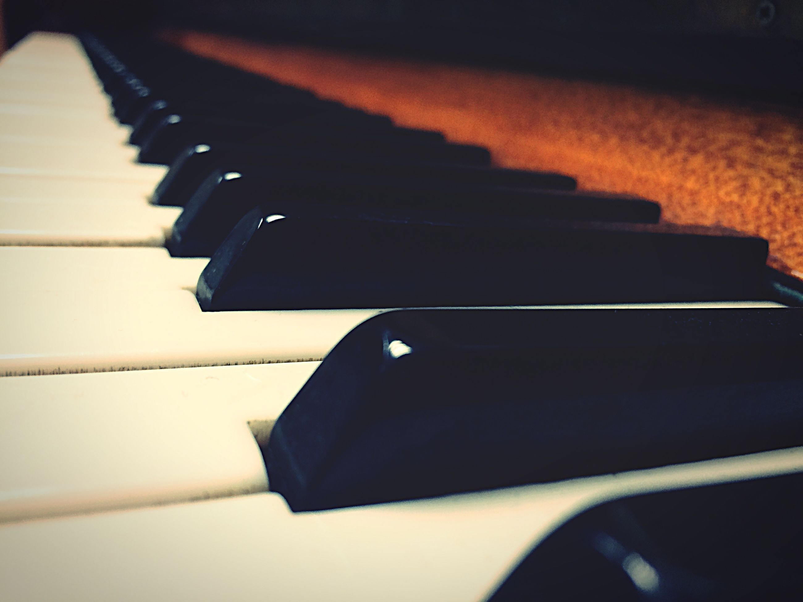 indoors, music, close-up, arts culture and entertainment, piano key, musical instrument, piano, still life, musical equipment, selective focus, no people, part of, book, focus on foreground, black color, technology, high angle view, table, single object, in a row