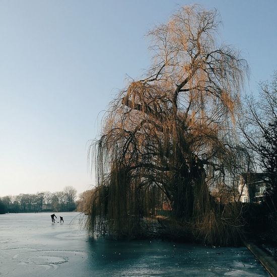 Water Sky Sea Outdoors Nature Tree Day People Fatherhood Moments Father & Son Father Frozen Lake Icehockey Eishockey
