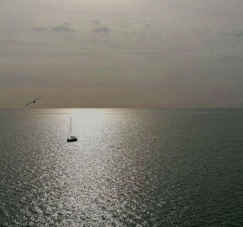 5 Terre 5 Terre Italia Liguria Fly Water Sea And Sky Animals In The Wild Bird Boat Free Space Silence Breathe Sunset Sun Scia Luce Orizzonte Sky