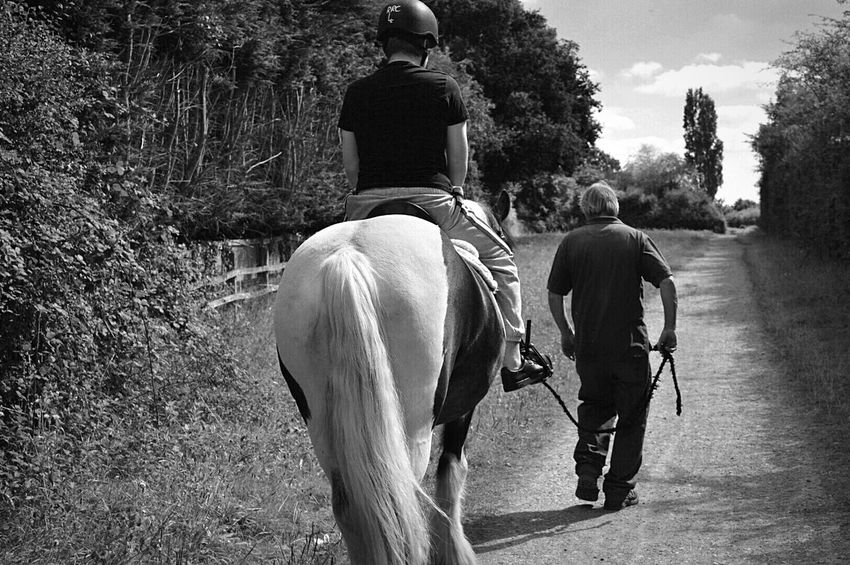 Hot Day at the Stables Riding School Horse Riding Down The Lane Countryside English Countryside Horse Horseback Riding Horse Black And White Horse Animals Animal Lover Black And White Black & White Black And White Photography Black & White Photography Nikon D3200