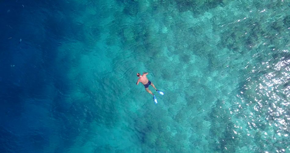 Aerial flying drone view of Maldives white sandy beach seaplane on sunny tropical paradise island with aqua blue sky sea Aerial Aquarium Beach Blue Diving Drone  Flying Island Maldives Ocean Paradise Sandy Seaplane Sky Snorkeling Sunny Tropical View White