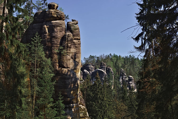 View of rock formation in forest against sky