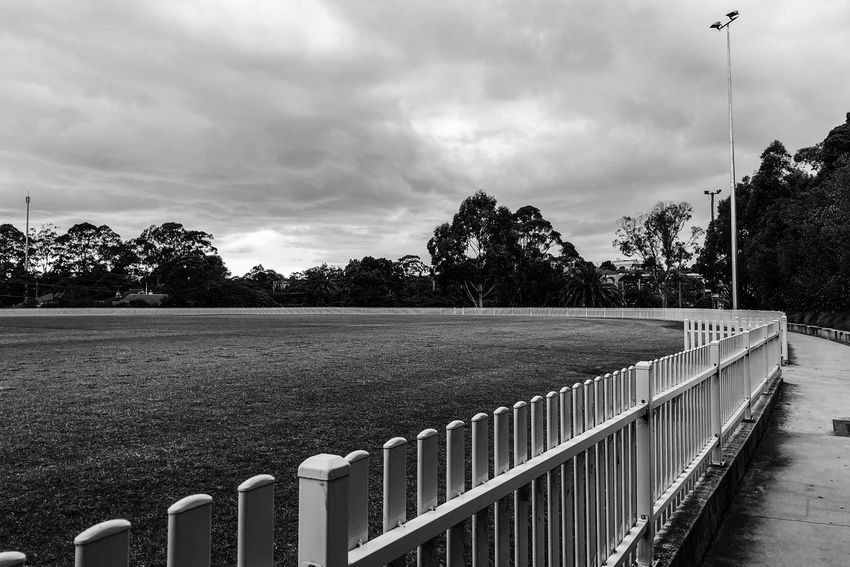 The fence Light And Shadow Monochrome Black And White Tree Cloud - Sky Sky Railing Day Outdoors Tranquility No People Nature