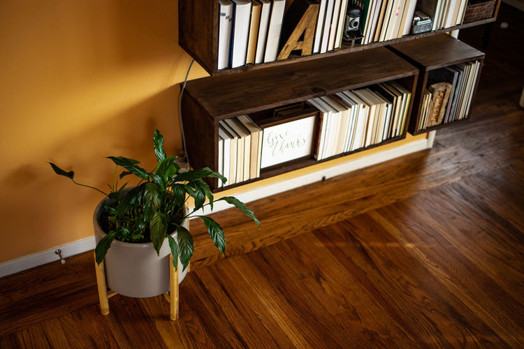 Wood - Material Indoors  Potted Plant Home Interior Table Hardwood Floor Wood No People Plant Shelf Book Flooring High Angle View Publication Seat Window Bookshelf Furniture Nature Domestic Room Houseplant Flower Pot Electric Lamp Analogue Sound
