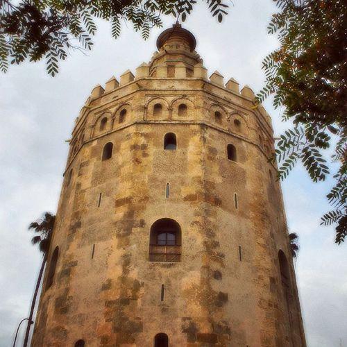 Torre del Oro Sevillagram Sevillahoy Sevillagramers Sevilla