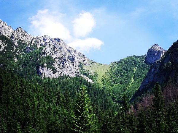 Cloud - Sky Mountain Nature Outdoors Sky No People Day Beauty In Nature Tree Tatra Mountains Tatry Tatry Poland Tatry - Poland Kościeliska Dolinakoscieliska