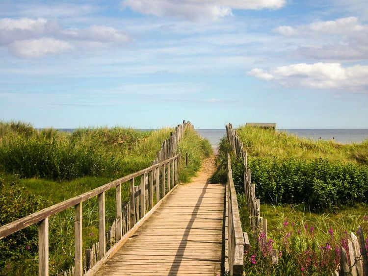 Bridge Wooden Handrail  Wood - Material The Great Outdoors With Adobe Weathered Beach Grass Flowers Sky And Clouds Blue Sky Sunny Sanshine Warm Summer Outside Water Ocean Nature Park Fence Hideaway Colour Image Sea Beach Hut