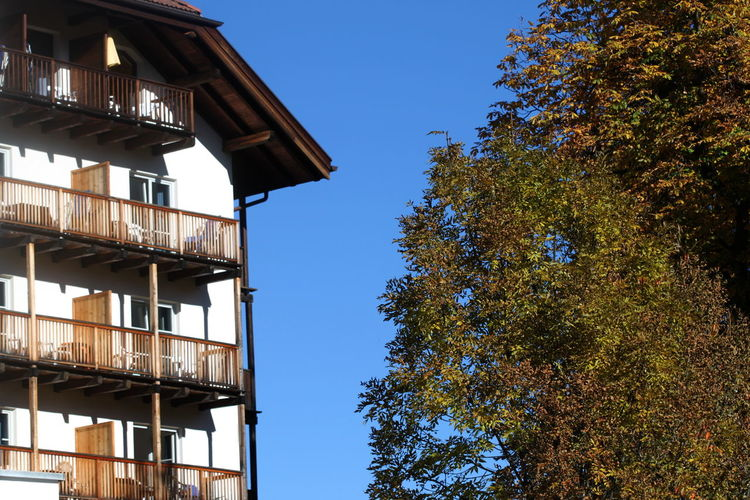 Architecture Autumn 2016 Big Tree Building Exterior Built Structure Clear Sky Day Fiè Allo Sciliar Italy No People Outdoors Sky Südtirol Tree White House Wooden Balconies