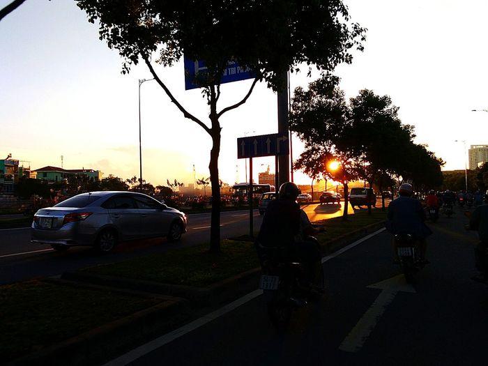 sài gòn Tree Car Sunset Road Sky