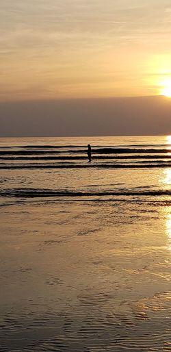 Water Sea Wave Sunset Full Length Beach Low Tide Silhouette Sun Sunlight