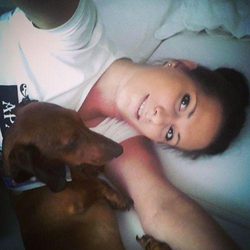 Продолжаю таксо-спам. Мой маленький Лео♥ самый красивый такс) Dogsgram Bestfriend коротколапаянежность мойбархатныйпес всемспать
