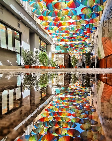 Multi colored umbrellas by lake against building