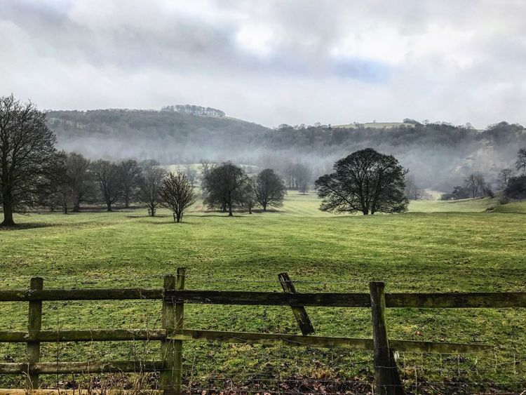Low clouds and rolling fog toward Ilham, Stoke-On-Trent. Fence Tranquility Tranquil Scene Nature Tree Landscape Grass Scenics Beauty In Nature Growth No People Day Sky Outdoors Field Green Color Perspective Tree Mountain Nature Panoramic Panorama Nature_collection Fog Cloud