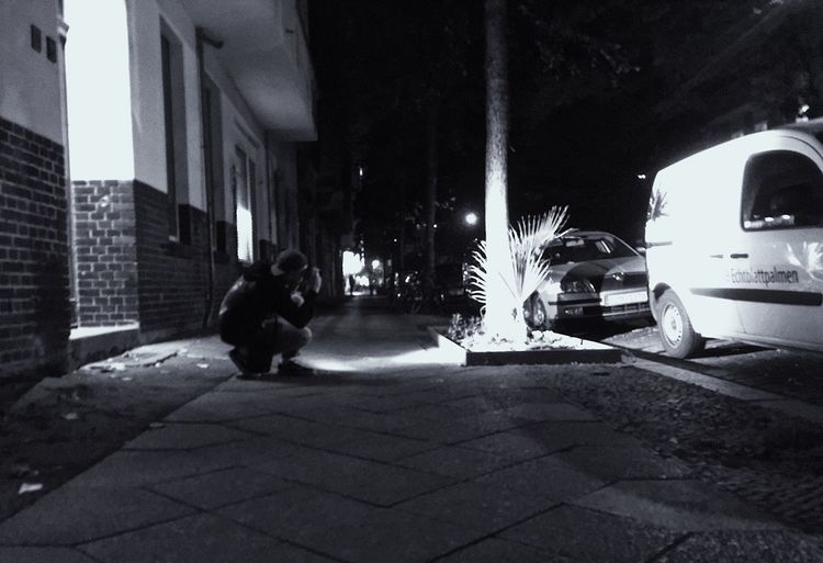 Dog sitting on street at night