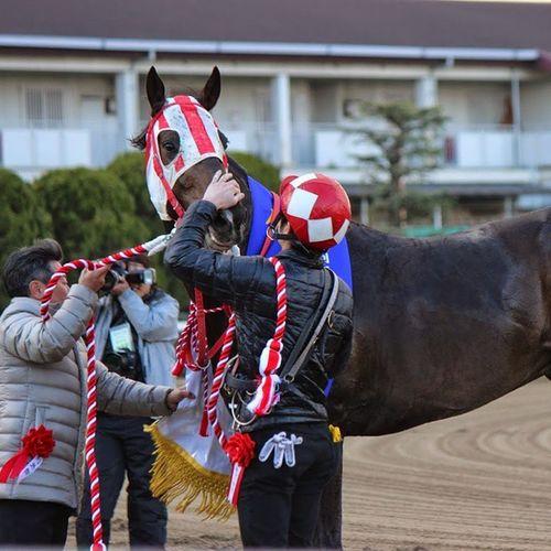園田競馬 ハルイチバン 六甲盃