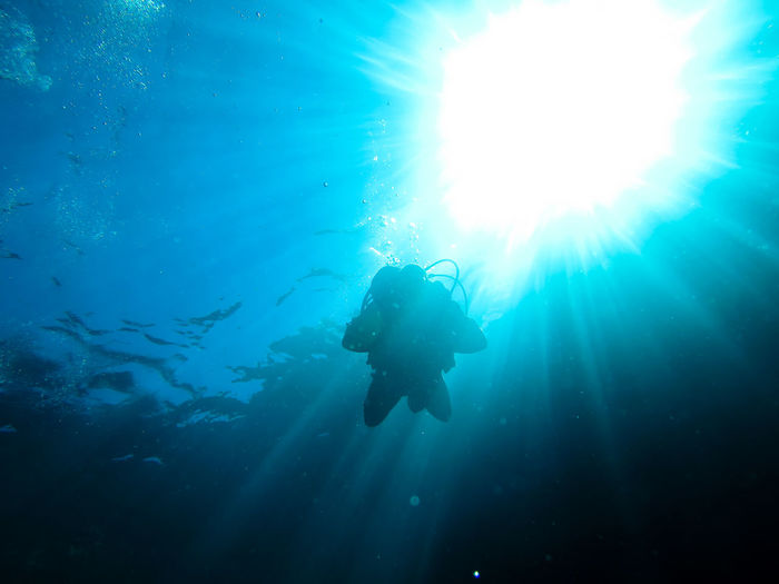Low angle view of people underwater