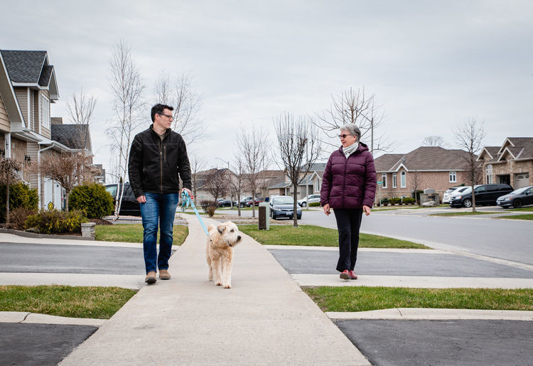 Full length of dog standing on street against sky
