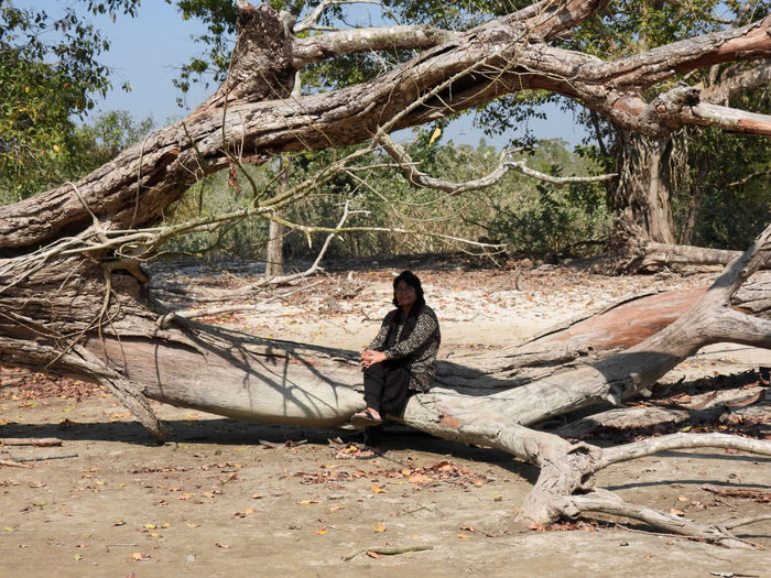 Side view of young man sitting on fallen tree