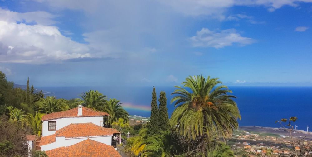 La Palma. November 2018 Rainbow🌈 Rainbow Villa De Mazo La Palma Canarias La Palma Island Canary Islands Round Trip La Palma, Canarias La Palma Canary Island Cloud - Sky Sky Plant Sea Tree Nature Water Architecture Beauty In Nature Day Palm Tree Tropical Climate Growth Built Structure No People Building Exterior Blue Scenics - Nature Horizon Over Water