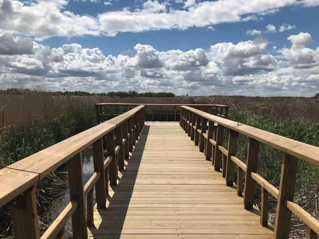 Cloud - Sky Sky Railing The Way Forward Direction Nature Wood - Material No People Bridge Architecture Tranquil Scene Beauty In Nature Outdoors