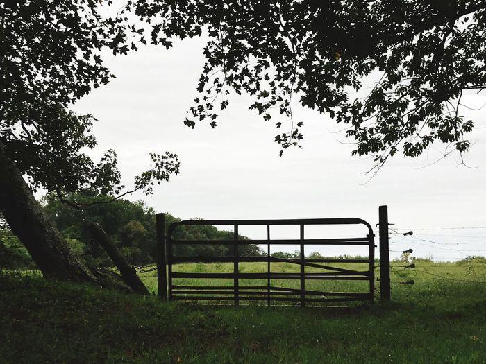 Farm with metal