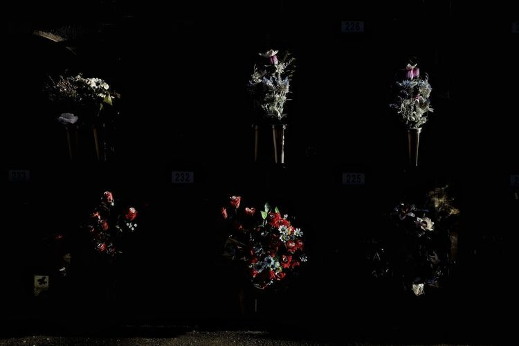 Sketches from a graveyard. Streetphotography Contre-jour Street Photography Flowers StillLifePhotography Still Life Light And Shadow Cemetery Flower Silhouette City