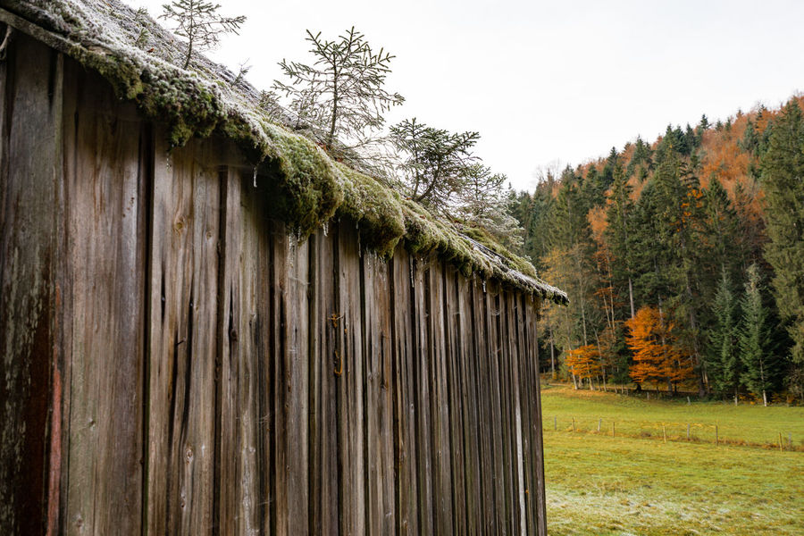 a short autumn vacation in altausee Altaussee Barn Built Structure EyeEm Nature Lover Hills And Valleys Lost Places Mountain Lake Nature Outdoors Refelections Tree Perspectives On Nature