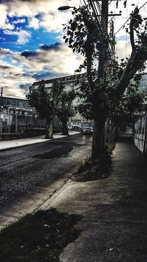 Chile City Quilpue Chilean  Old Buildings Tree Cloud - Sky Sky Outdoors No People Day City Nature 💀 Quilpue, +100 years building