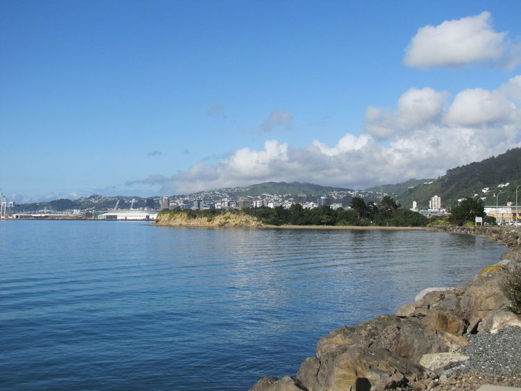 Wellington Harbour Beauty In Nature Day Nature No People Scenics Sky Water