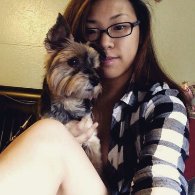 Happy upcoming bday to my bewa. Yorkie PuppyLove Ewok Bella