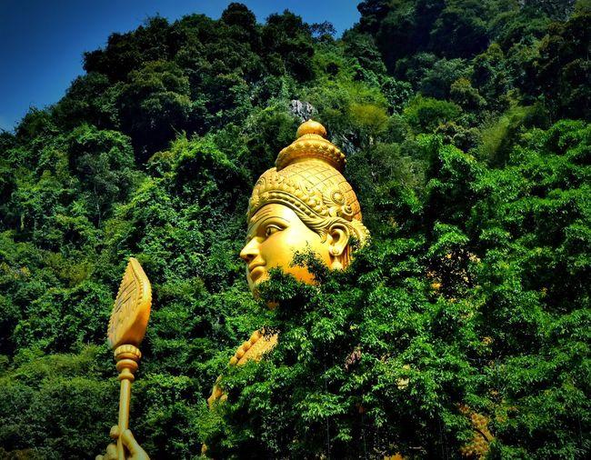 Thaipusam2016 Lord Murugan Limestone Hill Districtofgombak Malaysia