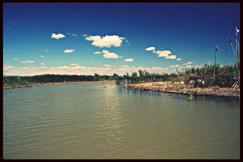 Donaudelta Nature Sky Romania