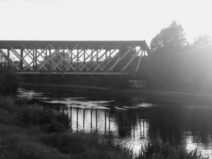 Sunshine Posho Rowing Bridge Graffiti Cambridge By The River