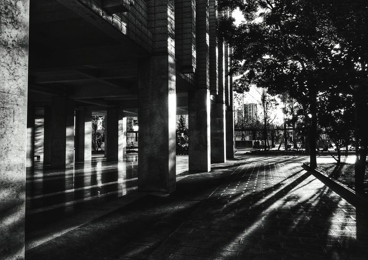 Architecture Built Structure Architectural Column Day Sunlight Shadow No People Indoors  Underneath