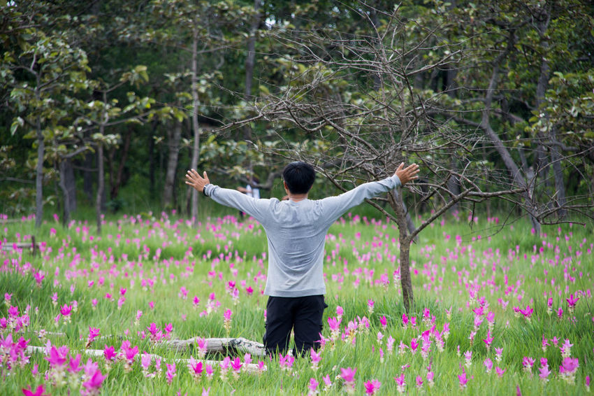 Adult Adults Only Beauty In Nature Day Flower Freshness Growth Human Arm Men Nature One Man Only One Person Only Men Outdoors People Plant Rear View Siam Tulip Standing Tree Young Adult